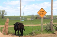 Wyoming backroad, wyoming open range