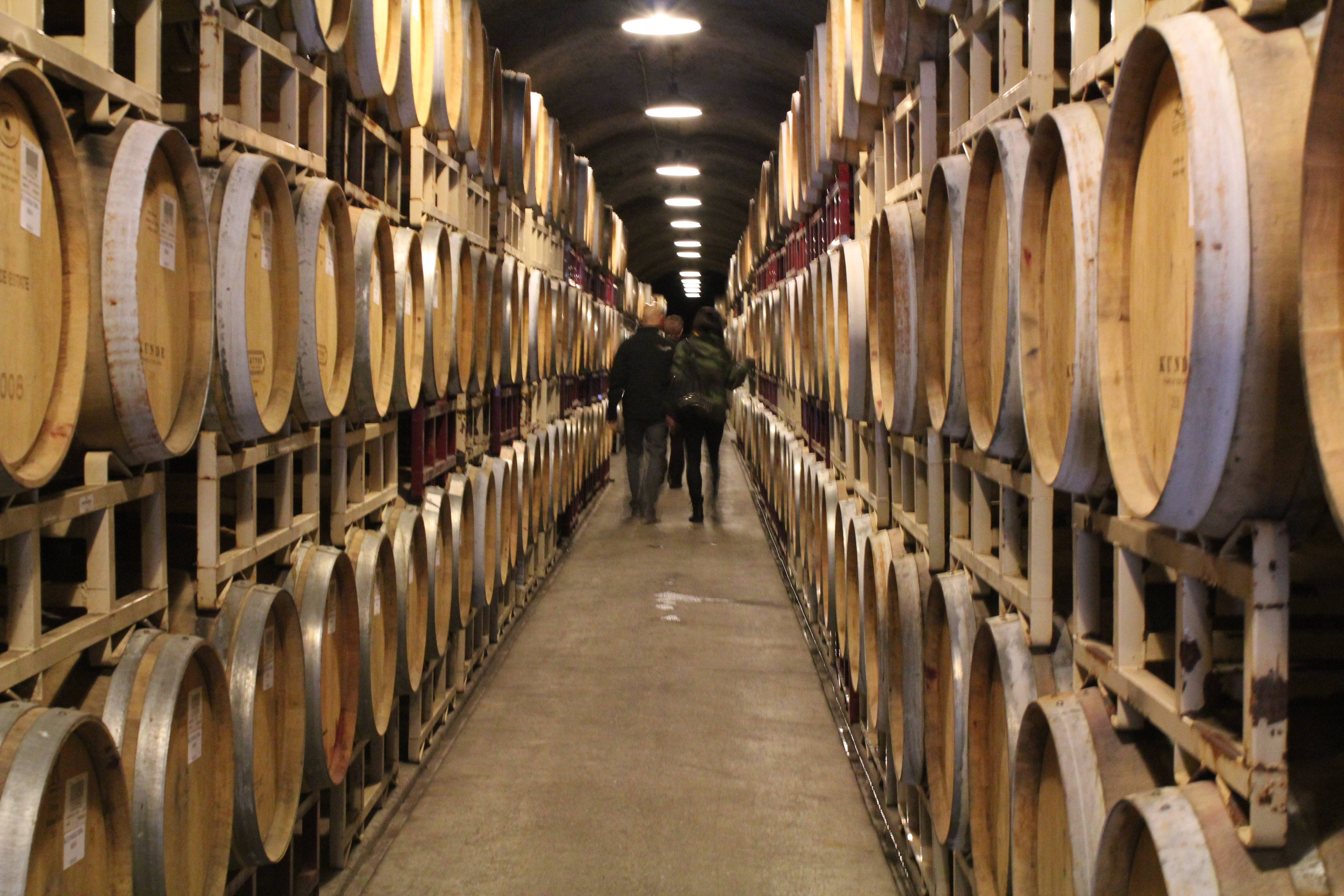 Kunde Winery wine cave, sonoma in december