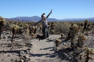 joshua tree in december, Joshua Tree National Park cholla cactus garden, jumping in the cactus garden