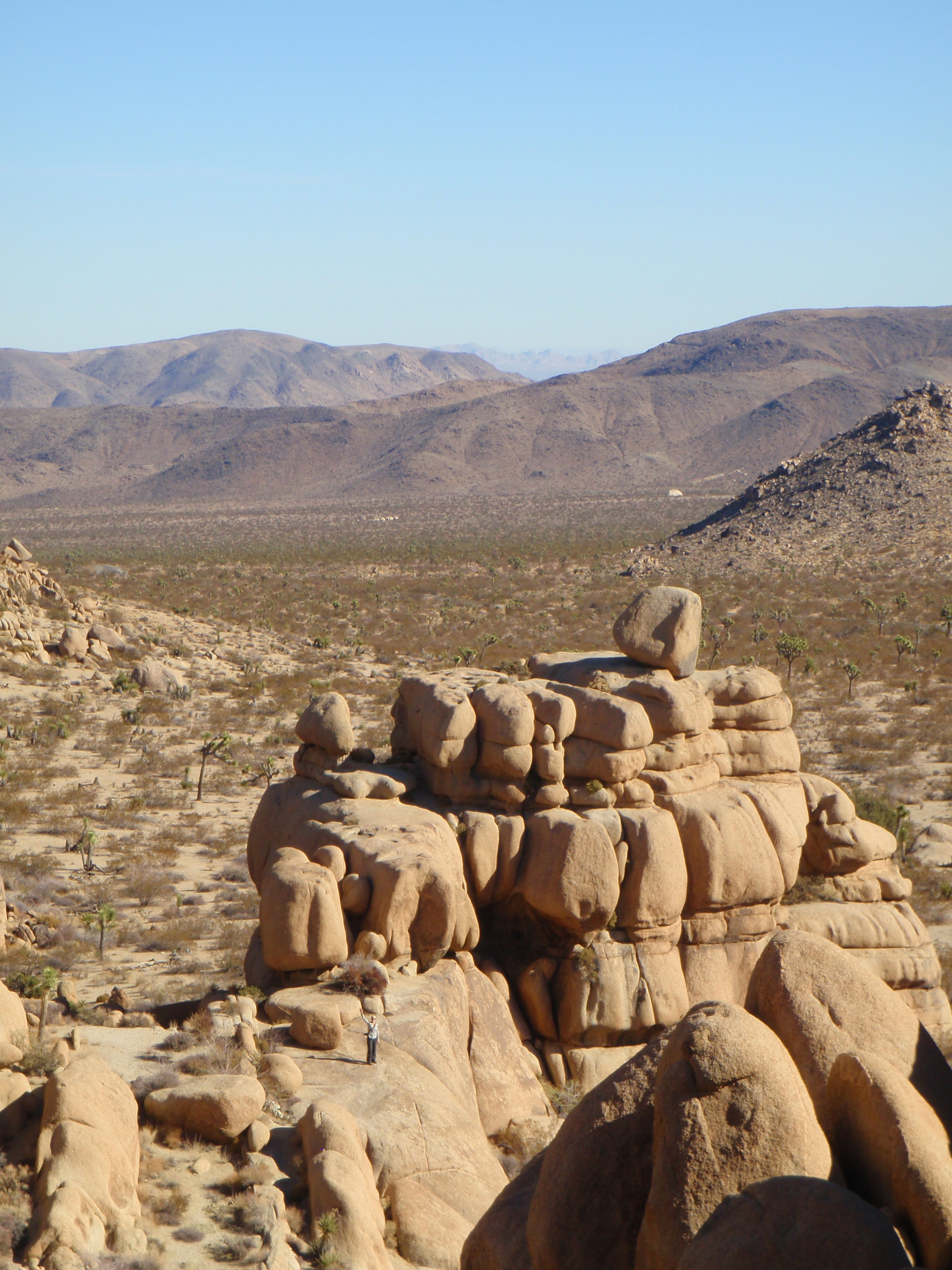 joshua tree in december, Joshua Tree National Park scramble