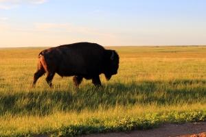 South Dakota, sunset