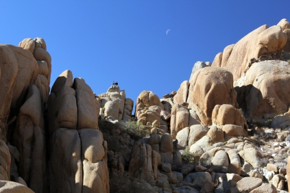California crescent moon, joshua tree scramble, buddies in joshua tree