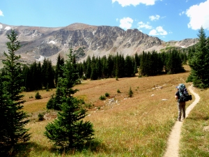 Colorado, backpacking, meadow