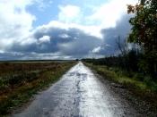 Wisconsin Scenic drive, Wisconsin backroad, Wisconsin backroad after rain