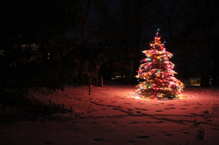 white Christmas, Iowa christmas, snow, Christmas lights in the snow