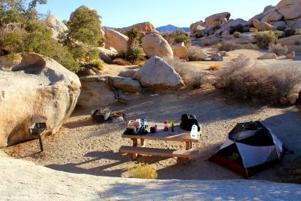 California car camping, joshua tree car camping