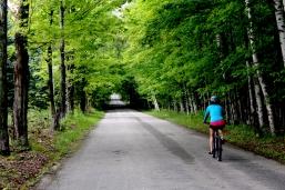 Door County cycling, Washington Island cycling, biking through the birches