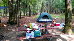 Manistee National Forest, car camping, infant, beach