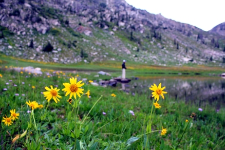 colorado fly fishing, fishing mica lake colorado, colorado backpackkng, colorado wildflowers