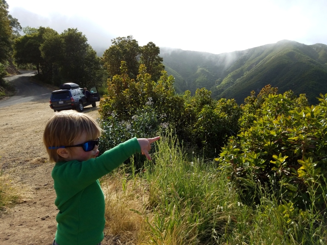epicroadtrip, bigsur, ca, california, camperconversion, 4runnercamperconversion, 4runnercamper, toyota, 4runner, thule, nacemiento