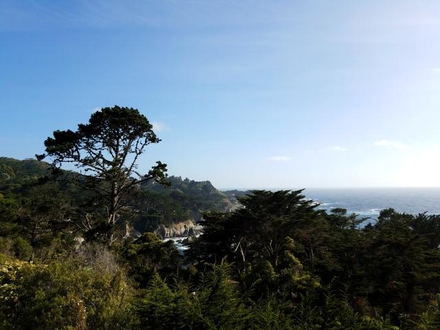 hyatt, oceanview, carmelbythesea, monterey, cyprus, cyprustree, carmel highlands