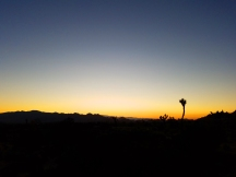 joshua tree natioal park, epic road trip, joshua tree, california, mojave desert, mojave sunset