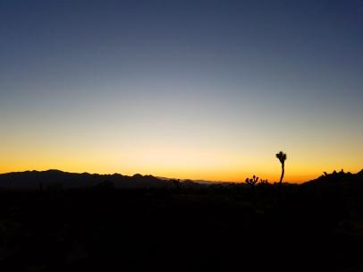 joshua tree natioal park, epic road trip, joshua tree, california, mojave desert, mojave sunset